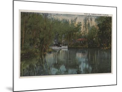 Water View of Tomoka River & Marsh, Florida - Florida-Lantern Press-Mounted Art Print