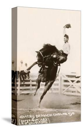 Bronco Buster--Stretched Canvas Print