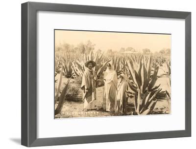 Natives on Maguey Plantation, Mexico--Framed Art Print