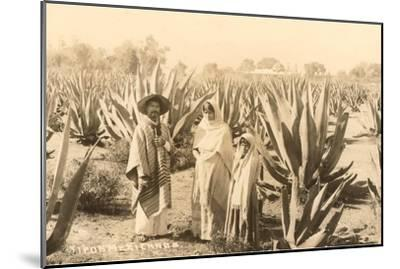 Natives on Maguey Plantation, Mexico--Mounted Art Print