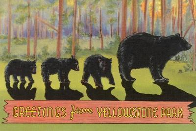 Greetings from Yellowstone National Park, Bears--Stretched Canvas Print
