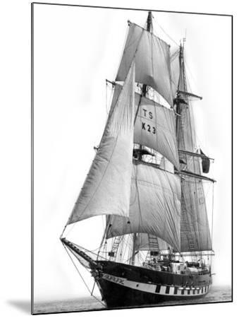 Sail Training Ship Royalist, March 1976--Mounted Photographic Print