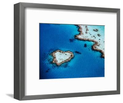 Heart-Shaped Reef, Hardy Reef, Near Whitsunday Islands, Great Barrier Reef, Queensland, Australia-Holger Leue-Framed Photographic Print