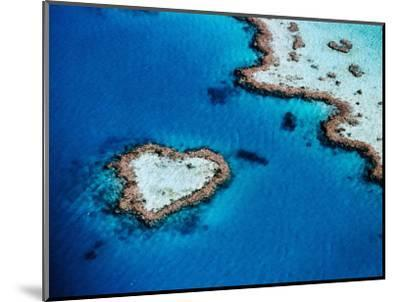 Heart-Shaped Reef, Hardy Reef, Near Whitsunday Islands, Great Barrier Reef, Queensland, Australia-Holger Leue-Mounted Photographic Print