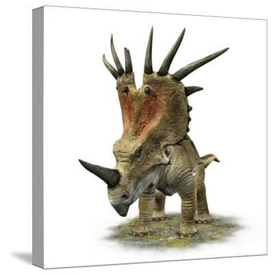 Styracosaurus with a Massive Horned Frill--Stretched Canvas Print