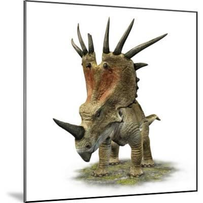 Styracosaurus with a Massive Horned Frill--Mounted Photographic Print