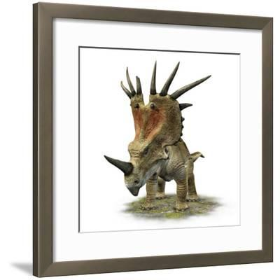 Styracosaurus with a Massive Horned Frill--Framed Photographic Print