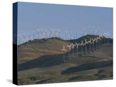 Rows of Spinning Wind Turbines Generate Electricity-Marc Moritsch-Stretched Canvas Print