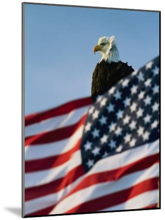 Close View of the American Flag's Stars and Stripes Waving in the Wind-Norbert Rosing-Mounted Photographic Print