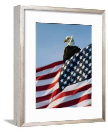 Close View of the American Flag's Stars and Stripes Waving in the Wind-Norbert Rosing-Framed Photographic Print
