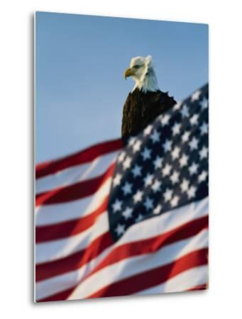 Close View of the American Flag's Stars and Stripes Waving in the Wind-Norbert Rosing-Metal Print