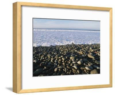 Whitewater From Crashing Waves Washes onto a Pebble Beach-Rich Reid-Framed Photographic Print
