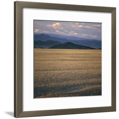 View of the Beginning of the Altai Range From the Gobi Desert-David Pluth-Framed Photographic Print