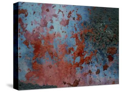 Close View of Lava Exploding From a New Cone on Mount Etna-Peter Carsten-Stretched Canvas Print