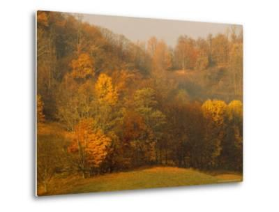 Morning View of Autumn Colors in the Jefferson National Forest-Raymond Gehman-Metal Print