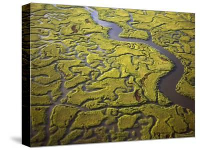 Aerial View of Marshes and Waterways Near Georgia's Sea Islands-Michael Melford-Stretched Canvas Print