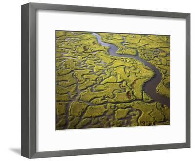 Aerial View of Marshes and Waterways Near Georgia's Sea Islands-Michael Melford-Framed Photographic Print