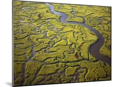 Aerial View of Marshes and Waterways Near Georgia's Sea Islands-Michael Melford-Mounted Photographic Print
