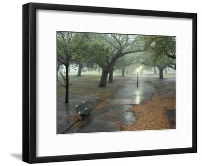Rain Softly Falls on White Point Gardens-Rex Stucky-Framed Photographic Print