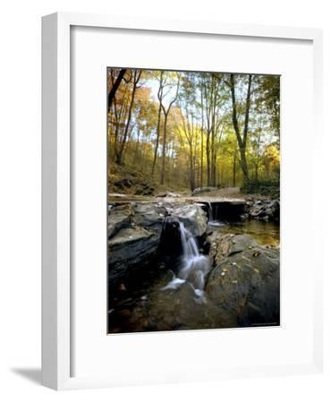 Woodland View at Long Branch Nature Center-Rex Stucky-Framed Photographic Print