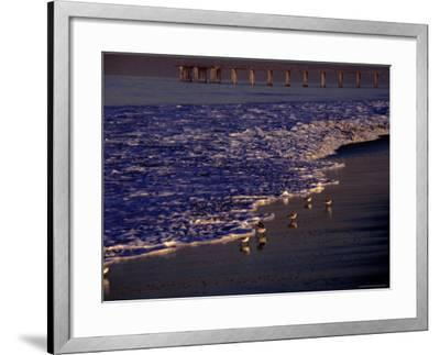 Surf Chasing Birds on Beach at Hermosa Beach-Christina Lease-Framed Photographic Print