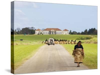 Paying Tribute to the New King of Tonga-Oliver Strewe-Stretched Canvas Print