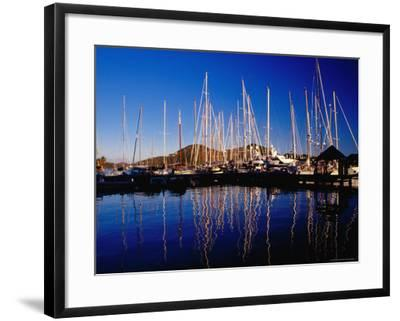 Yachts in Marina at Falmouth Harbour-Richard I'Anson-Framed Photographic Print