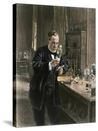 Louis Pasteur in His Laboratory--Stretched Canvas Print