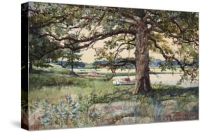 Pelham Bay Park, NYC, 1884-Harry Fenn-Stretched Canvas Print