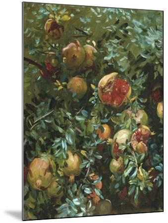 Pomegranates, Majorca-John Singer Sargent-Mounted Giclee Print
