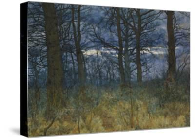The Wood at Dusk, 1884-William Fraser Garden-Stretched Canvas Print
