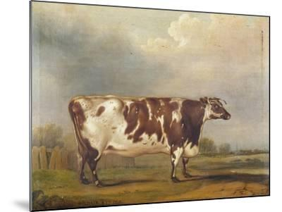 Wildair' an Eight-Year-Old Heifer in a River Landscape, 1827-Thomas Weaver-Mounted Giclee Print