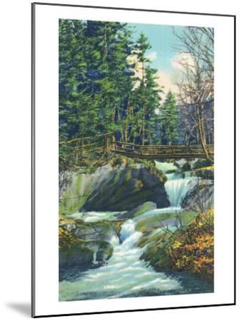 White Mountains, New Hampshire, View of the Franconia Notch Basin-Lantern Press-Mounted Art Print