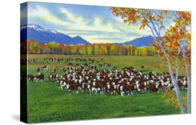 New Mexico, View of Cattle on the Range-Lantern Press-Stretched Canvas Print