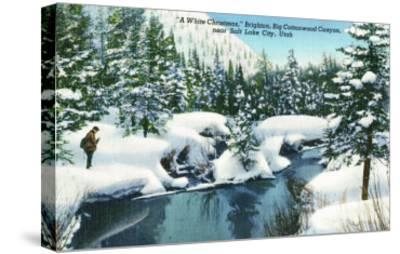 Brighton, Utah, A Snowy Winter Scene in Big Cottonwood Canyon-Lantern Press-Stretched Canvas Print
