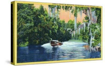Silver Springs, Florida, View of a Speedboat Cruising the Silver River and Jungle-Lantern Press-Stretched Canvas Print