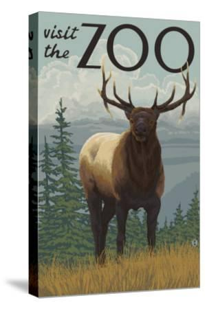 Visit the Zoo, Elk Solo-Lantern Press-Stretched Canvas Print