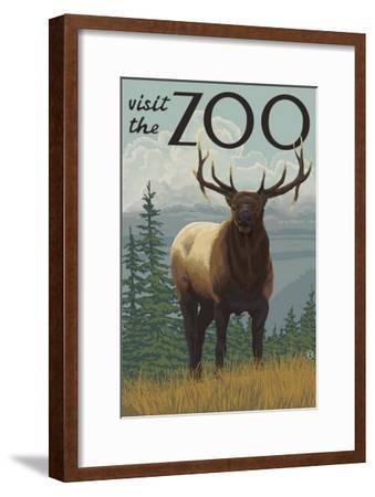Visit the Zoo, Elk Solo-Lantern Press-Framed Art Print