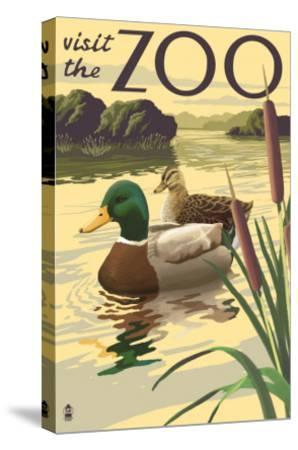Visit the Zoo, Mallard Ducks Scene-Lantern Press-Stretched Canvas Print