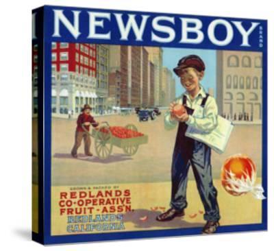 Redlands, California, Newsboy Brand Citrus Label-Lantern Press-Stretched Canvas Print