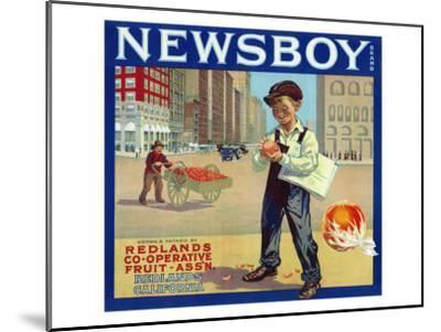 Redlands, California, Newsboy Brand Citrus Label-Lantern Press-Mounted Art Print