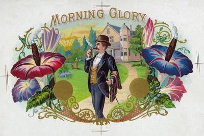 Morning Glory Brand Cigar Box Label-Lantern Press-Stretched Canvas Print