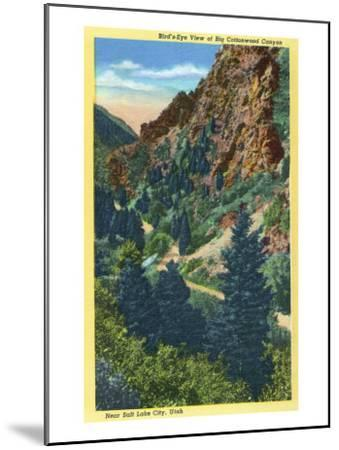 Utah, Aerial View of Big Cottonwood Canyon near Salt Lake City-Lantern Press-Mounted Art Print