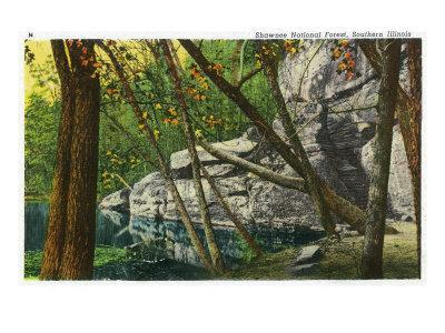 Shawnee National Forest, Illinois, Scenic View in Southern Illinois-Lantern Press-Framed Art Print