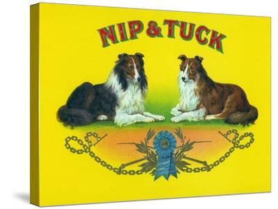 Nip and Tuck Brand Cigar Box Label, Rough Collies-Lantern Press-Stretched Canvas Print