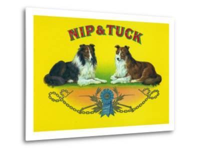 Nip and Tuck Brand Cigar Box Label, Rough Collies-Lantern Press-Metal Print