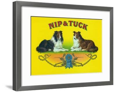 Nip and Tuck Brand Cigar Box Label, Rough Collies-Lantern Press-Framed Art Print