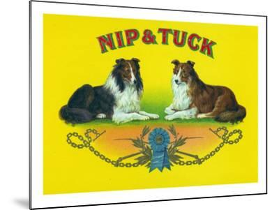 Nip and Tuck Brand Cigar Box Label, Rough Collies-Lantern Press-Mounted Art Print