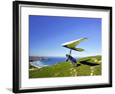 Hang Glider, Otago Peninsula, near Dunedin, South Island, New Zealand-David Wall-Framed Photographic Print