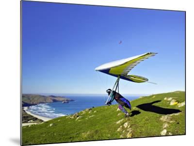 Hang Glider, Otago Peninsula, near Dunedin, South Island, New Zealand-David Wall-Mounted Photographic Print